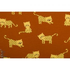 Little lion jersey 150cm