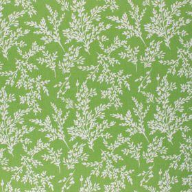 Coton Brins vert